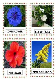 English Worksheet: FLOWERS PART-5