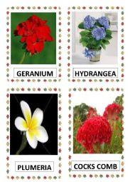 English Worksheet: FLOWERS PART-6