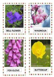 English Worksheet: FLOWERS PART-7