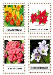 English Worksheet: FLOWERS PART-10