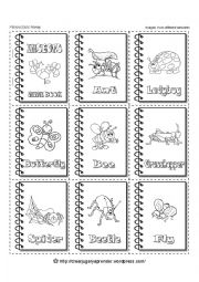 English Worksheet: INSECTS - MINIBOOK