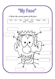 English Worksheets: Parts of the Face