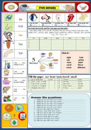 English Worksheets: Body : Our Five Senses