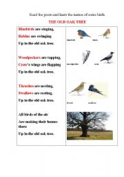 English Worksheets: BIRDS poem with some tasks