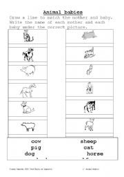 English Worksheet: Mother and baby animals