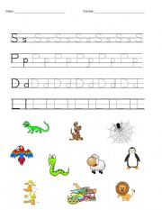 English Worksheets: S P D L - First Letter Trace and Match
