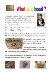 English Worksheets: Fossils