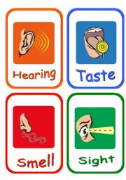 English Worksheet: 5 senses and body parts flashcards