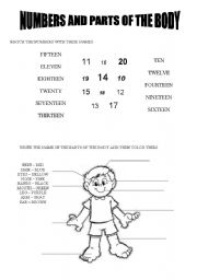 English Worksheets: Numbers and parts of the body