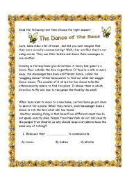 English Worksheet: Bees Dance