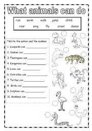 English Worksheets: Animal Abilities