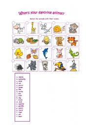 English Worksheets: what is your favourite animal?