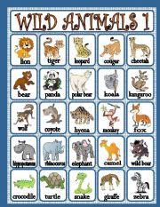 English Worksheet: wild animals 1