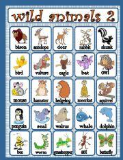 English Worksheet: wild animals 2