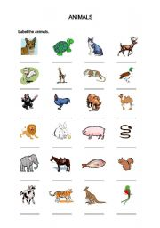 English Worksheets: Labelling Animals