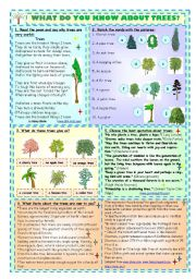 What Do You Know About Trees?