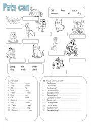 English Worksheets: Pets can