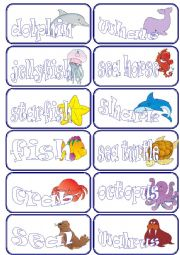English Worksheets: sea animals flashcards