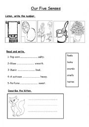 English Worksheets: Our Five Senses