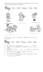 English Worksheet: the senses