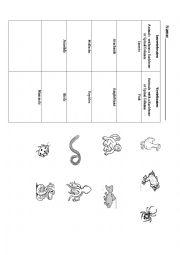 English Worksheet: Vertebrates and Invertebrates