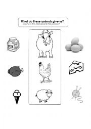 English Worksheets: what do these animals give us?