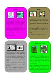English Worksheet: Environment/Habitat part 3 ( Wetland, Cave, Island, Coniferous Forest)