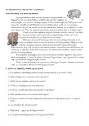 English Worksheet: Interesting facts about big animals