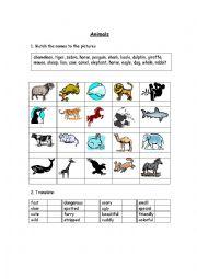 English Worksheets: Animsls