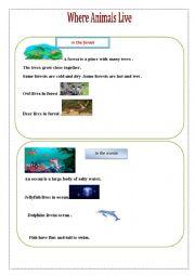 English Worksheets: Where animals live