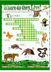 English Worksheet: Habitats - Rainforest