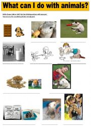 English Worksheets: What can or can�t I do with pets?