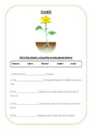 English worksheets: plants worksheets, page 20