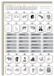 English Worksheets: Wild animals. Matching.