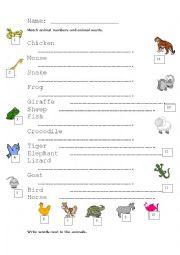 English Worksheets: Cambridge Starters - Animals