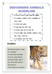 English Worksheets: DESCRIBING ANIMALS GUIDELINE - MY FAVOURITE ANIMAL