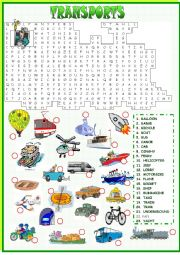 English Worksheets: Transports Wordseach