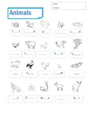 English Worksheet: Animals examn