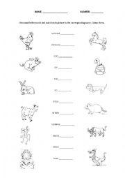 English worksheets: Chinese zodiac matching game