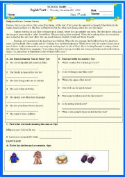 English worksheet: Complete test for 9th grade