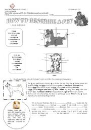 English Worksheet: How to describe a pet