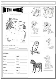 English Worksheet: Animals in the jungle