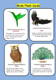 English Worksheet: BIRDS FLASH CARDS