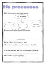 English worksheets: life processes