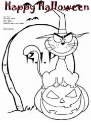 English Worksheet: Evil Cat on Pumpkin    Halloween
