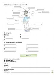English Worksheet: Test:  6th Grade - Part II
