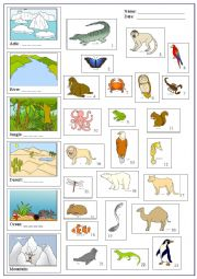 english worksheets animals and places. Black Bedroom Furniture Sets. Home Design Ideas