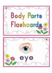 English Worksheet: body parts flashcards