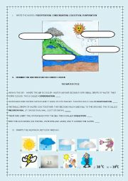 English Worksheet: Water Cycle and Weather