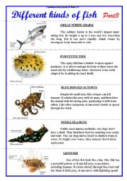English Worksheets: Different kinds of fish. Part 3.